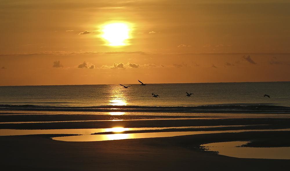 Sunset HH.jpg