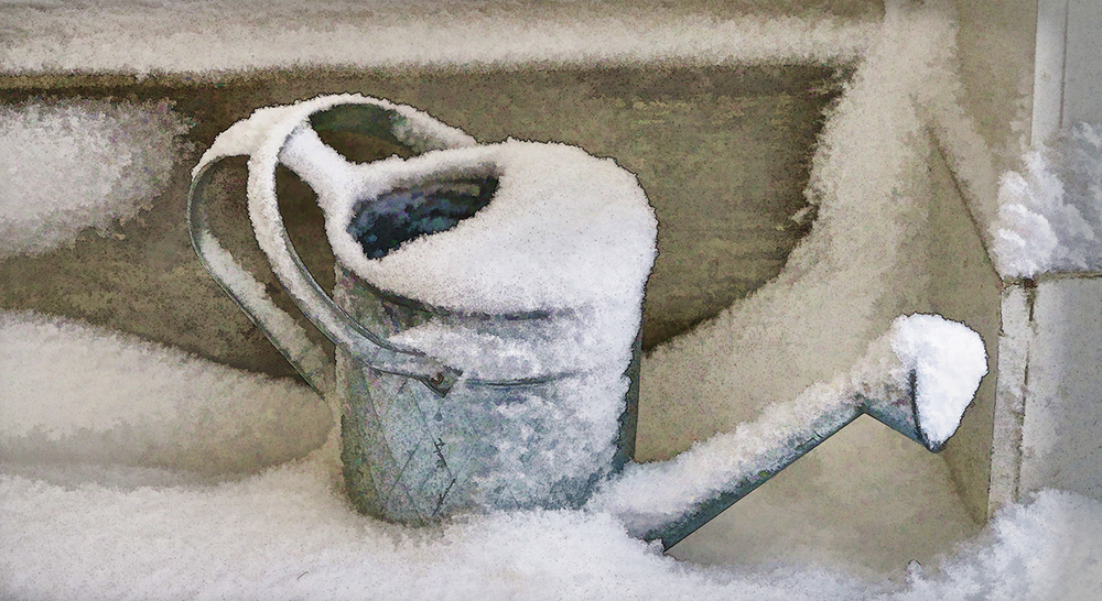 Watering Can Snow.jpg