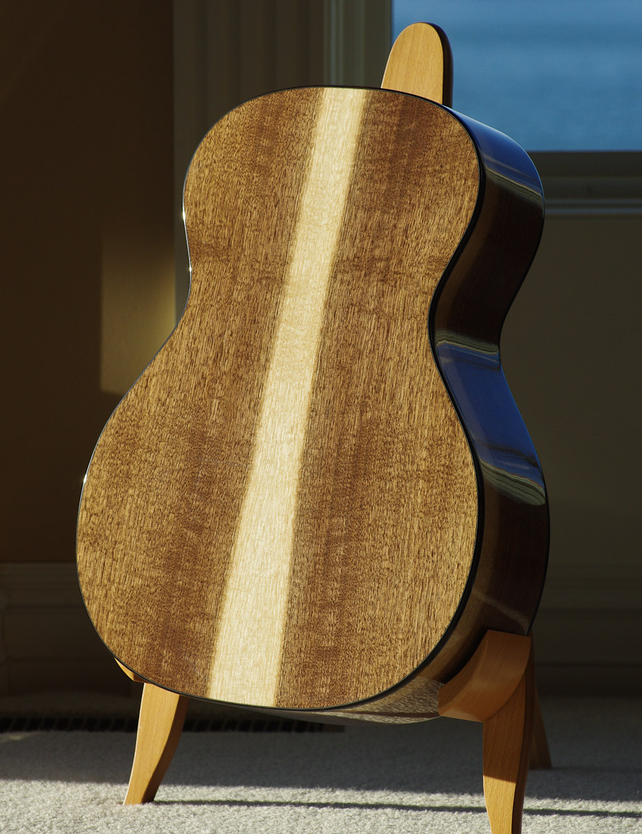 Eastern Black Walnut guitar back