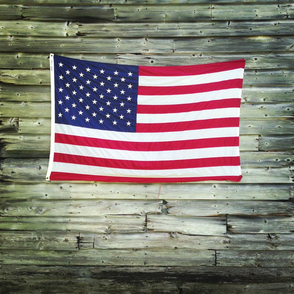 Louisa Corbett_Hudson New York_American flag_1.JPG