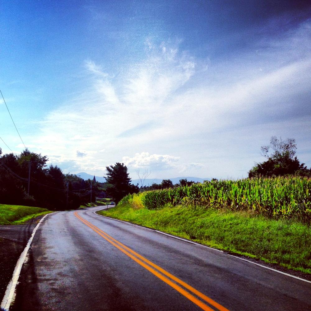 Louisa Corbett_Hudson NY_Manorton road vista.JPG