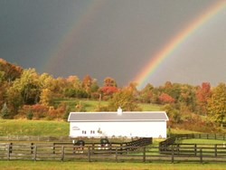 gI_79575_Double rainbow.jpg