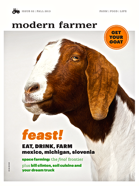 Modern Farmer Fall 2013.png