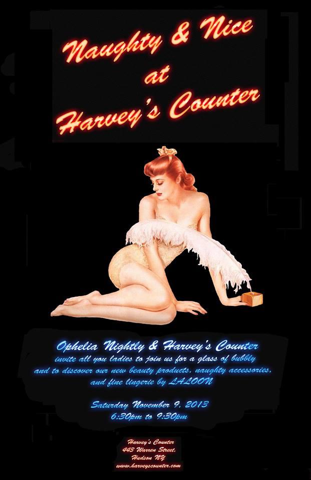 Naughty & Nice_Hudson NY_Harvey's Counter.jpg
