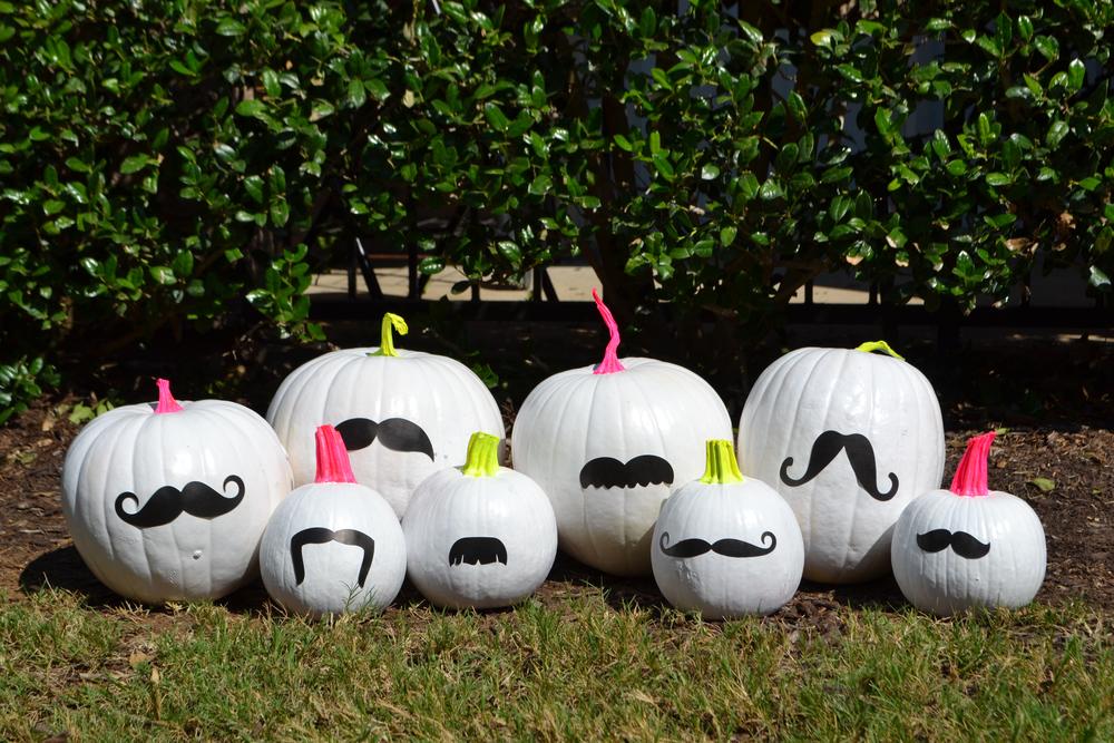 Funky Bunch of Pumpkins 00.jpg