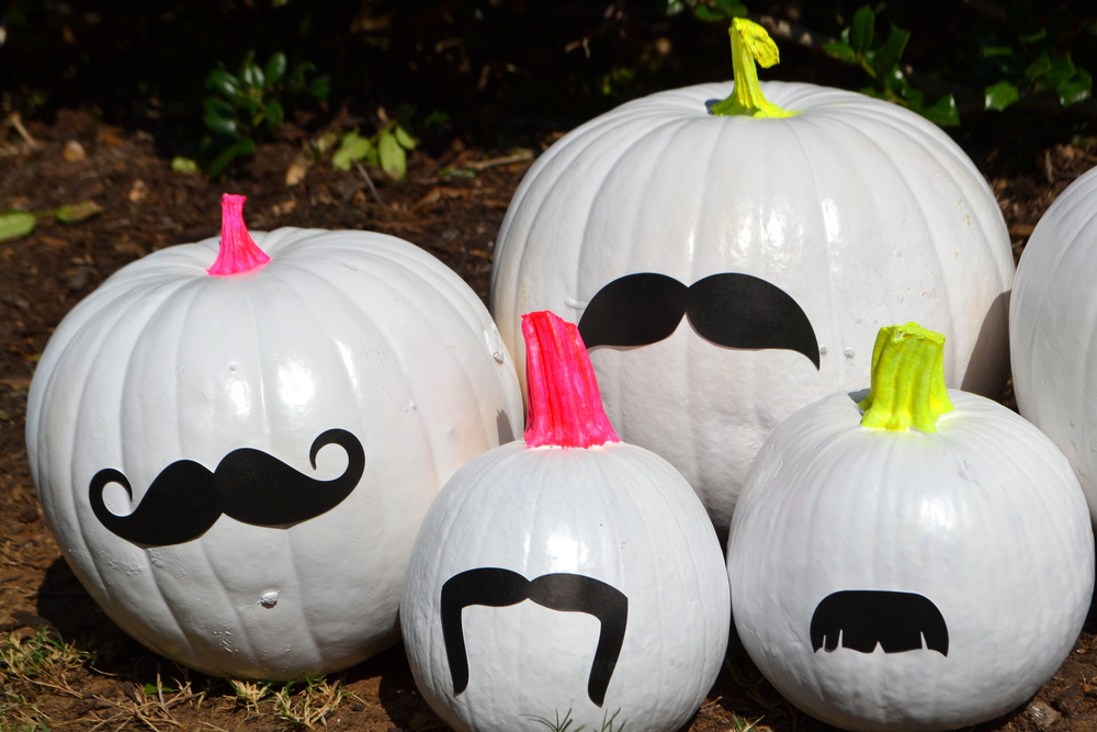 Funky Bunch of Pumpkins 03.jpg