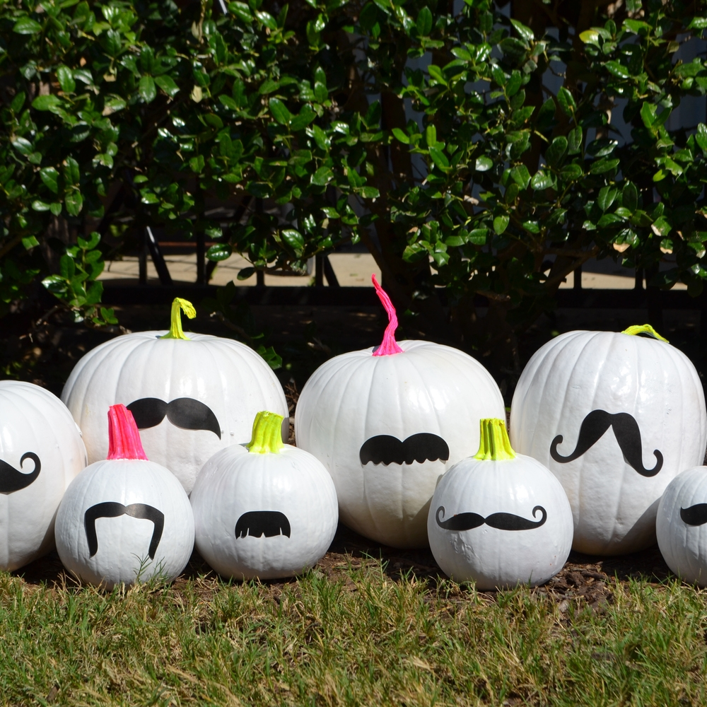 a FUNKY BUNCH of MUSTACHED PUMPKINS