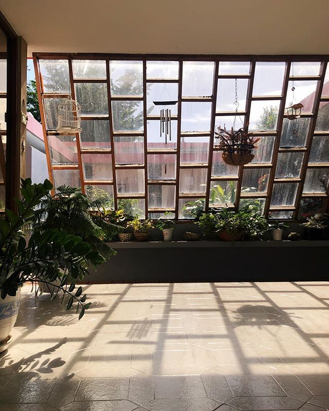 Casa de Ita.  #vsco #puertorico #indoorgardengoals #casasdepuertorico