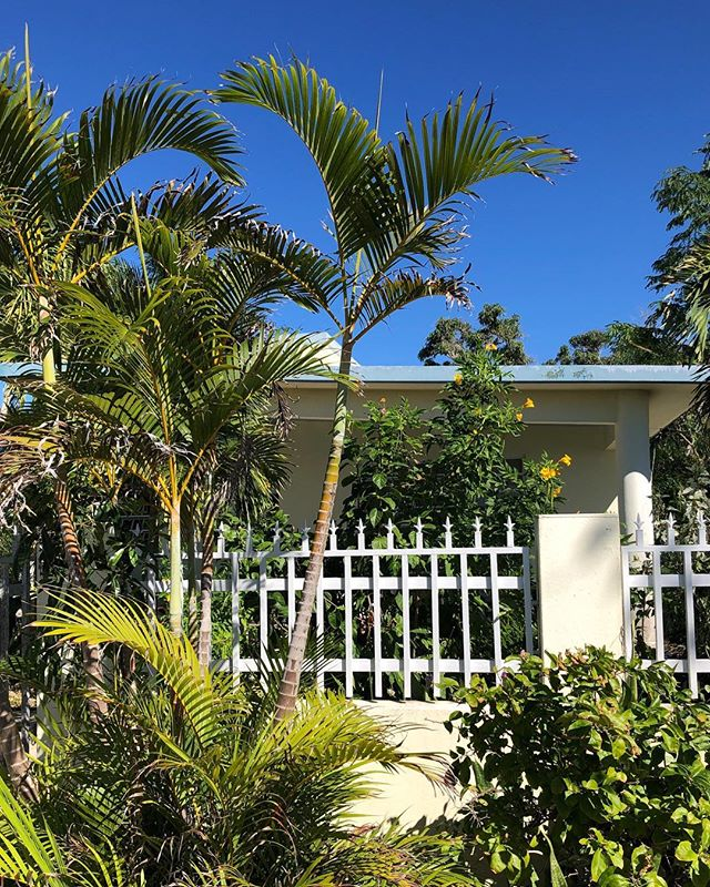 Casas de Rincón.  #puertorico #ihavethisthingwithplants