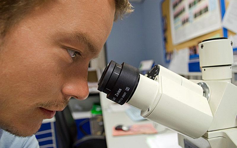 Los científicos y la creación de vida