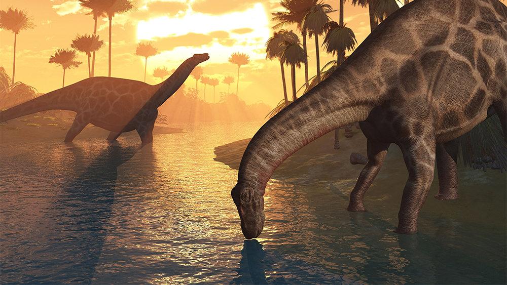¿Por qué la Biblia No Menciona a los Dinosaurios?