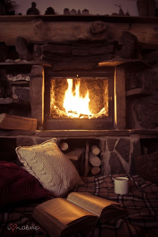 Your Saturday Bookish: cozy fire