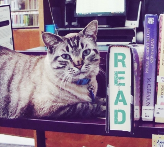texas library cat reinstated