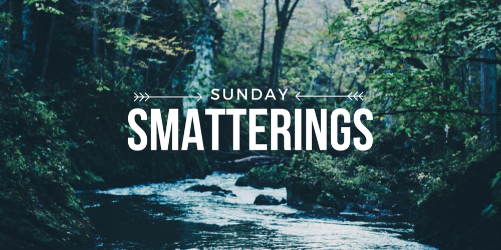 Sunday Smatterings 8.28.16