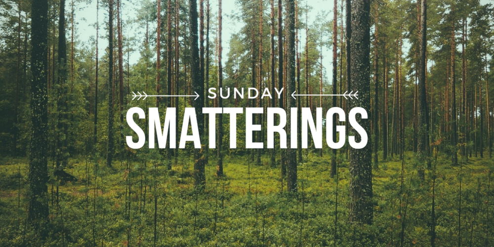 Sunday Smatterings 10.9.16