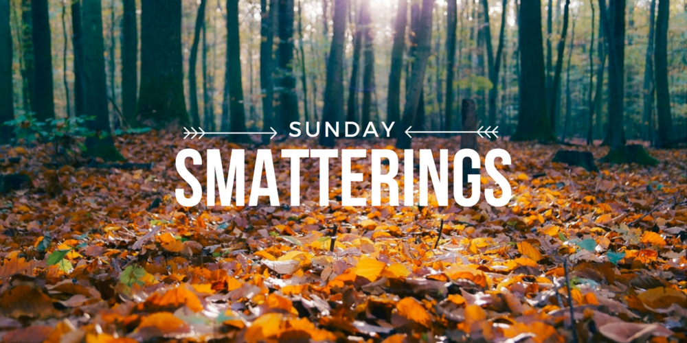 Sunday Smatterings 10.30.16