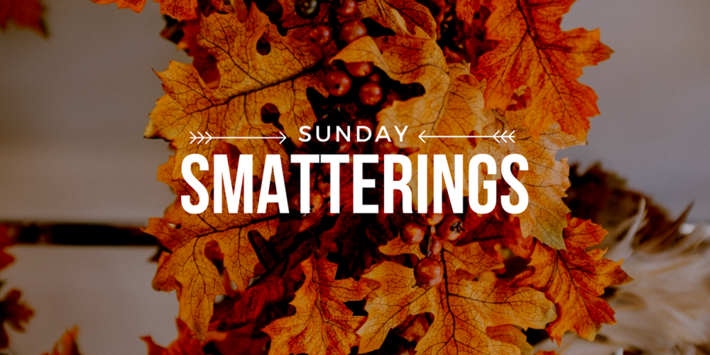 Sunday Smatterings 11.13.16