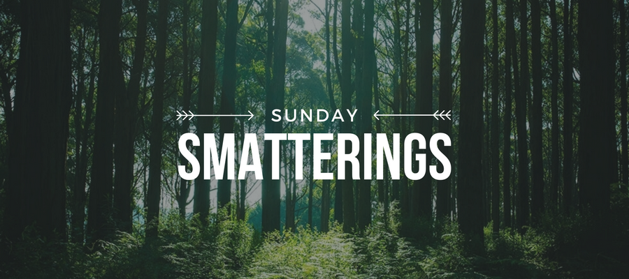 Sunday Smatterings 2.26.17