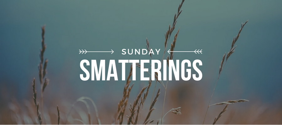 Sunday Smatterings 6.25.17