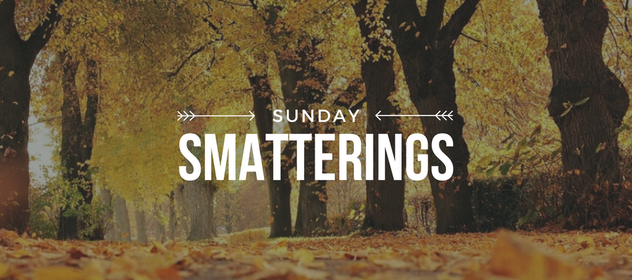 Sunday Smatterings 10.8.17