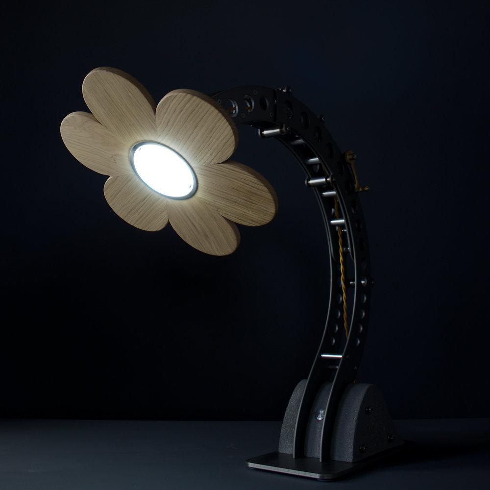 BLOTT WORKS - Daisy Crane lamp - IMG_0109.jpg