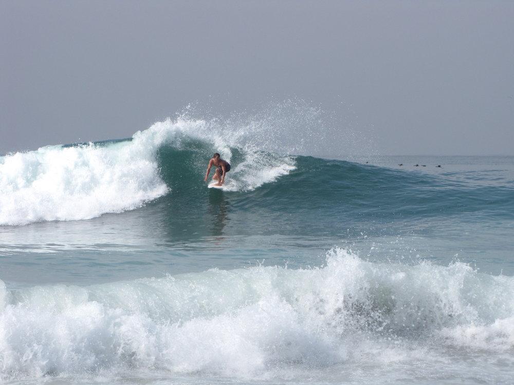 SURF & SKATE - January 2019