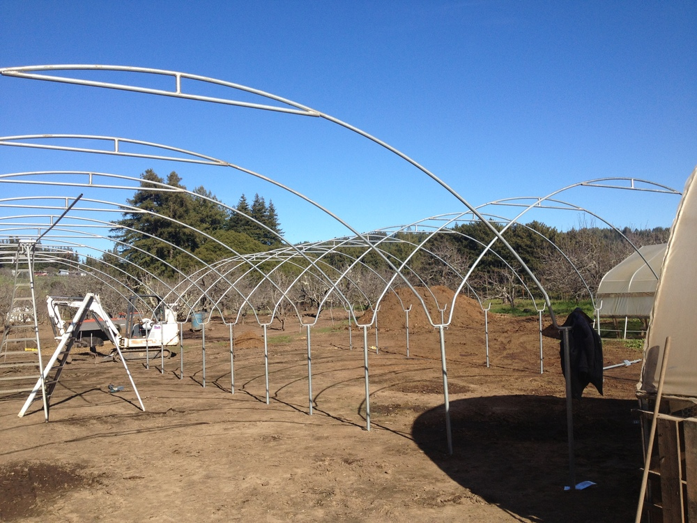 New High Tunnels