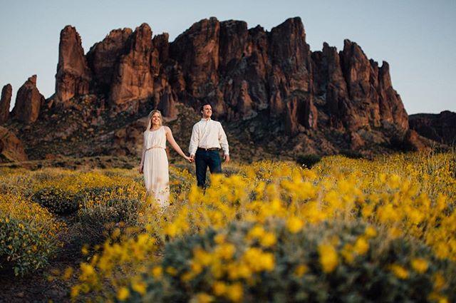 The desert is my favorite! #adventureengagement #arizonaengagement #wildflowers