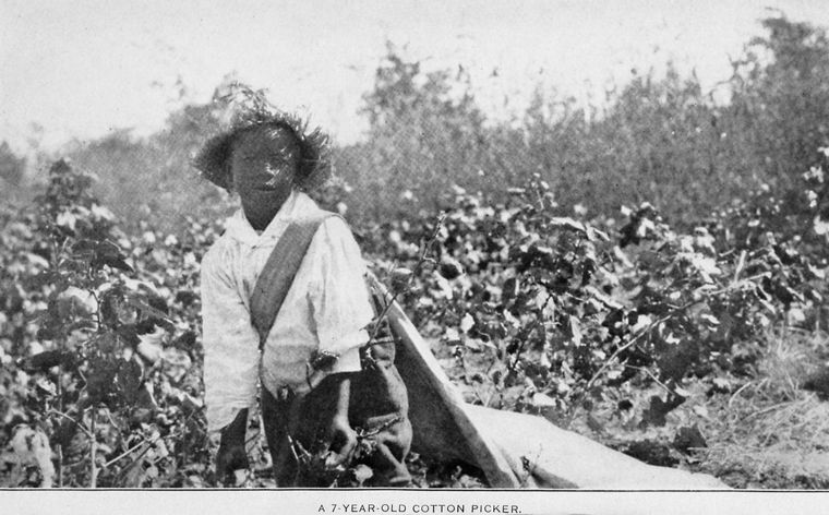 A 7-year-old cotton picker, 1924