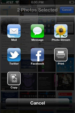 A share sheet in the Photos app on an iPhone running iOS 6.