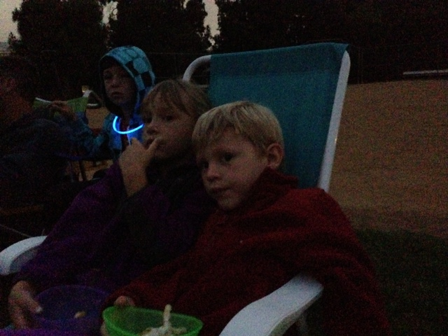 kids at movie in park.png