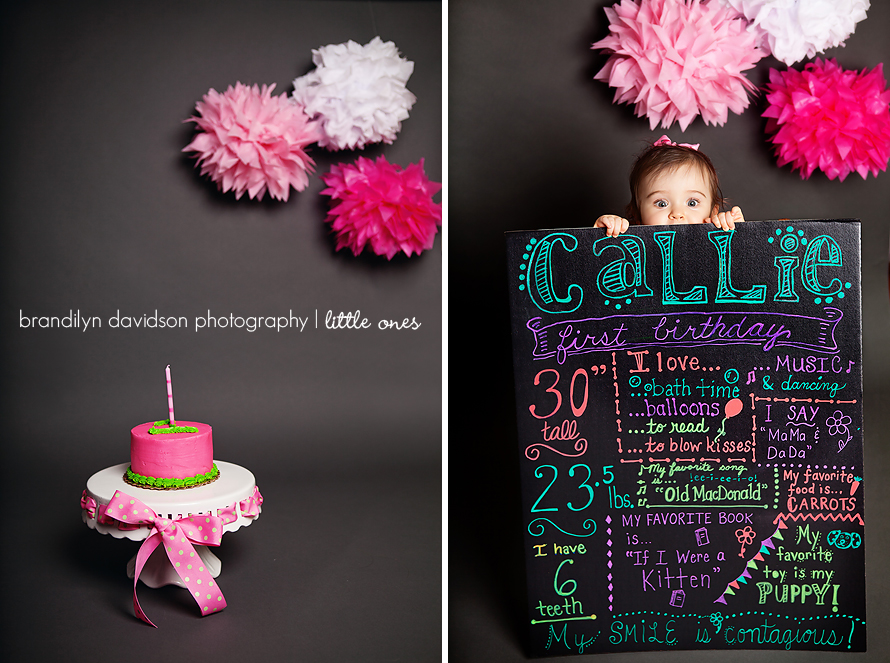 callie-holding-first-birthday-sign-in-tri-cities-tn-by-photographer-brandilyn-davidson-photography.jpg