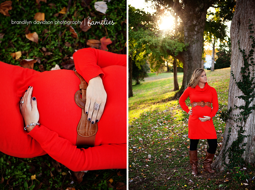 cameron-maternity-in-fall-colors-by-brandilyn-davidson-photography.jpg
