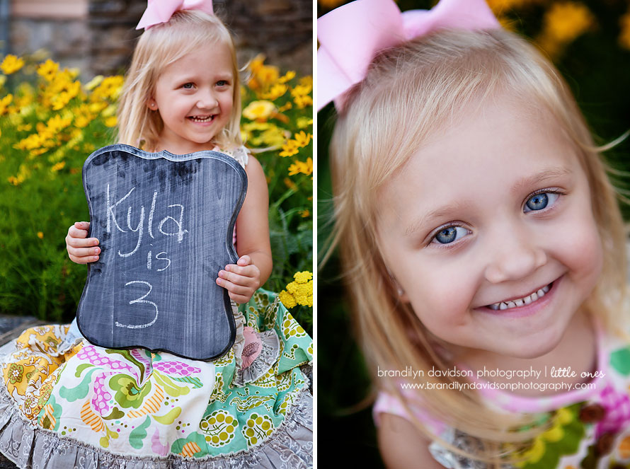 kyla-is-three-on-6.12.13-in-jonesborough-tn-by-family-photographer-brandilyn-davidson-photography.jpg