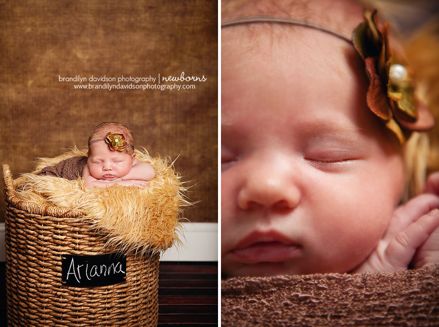 Arianna-in-a-basket-in-kingsport-tn-on-9.12.13-by-newborn-photographer-brandilyn-davidson-photography.jpg