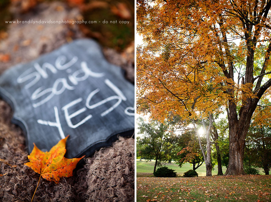 she-said-yes-10.18.13-in-bristol-va-by-photographer-brandilyn-davidson-photography.jpg
