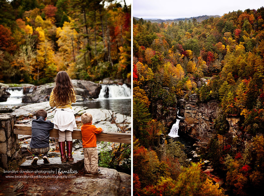 davidson-kiddos-in-nc-on-10.17.13-by-brandilyn-davidson-photography.jpg