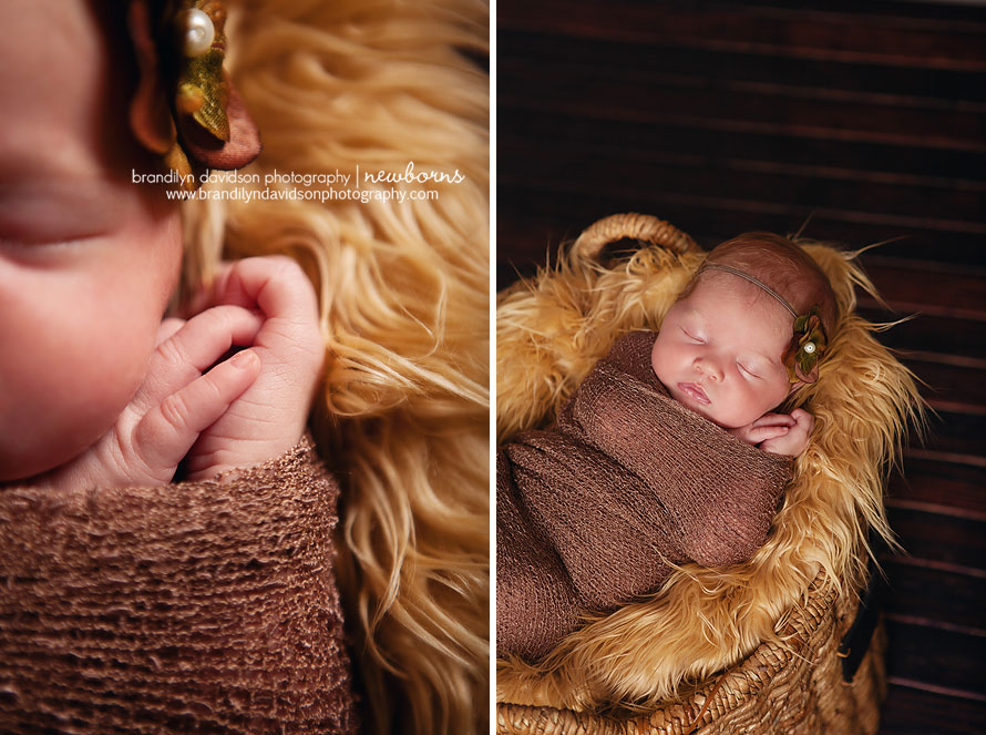 newborn-baby-girl-in-tri-cities-tn-on-9.12.13-by-photographer-brandilyn-davidson-photography.jpg