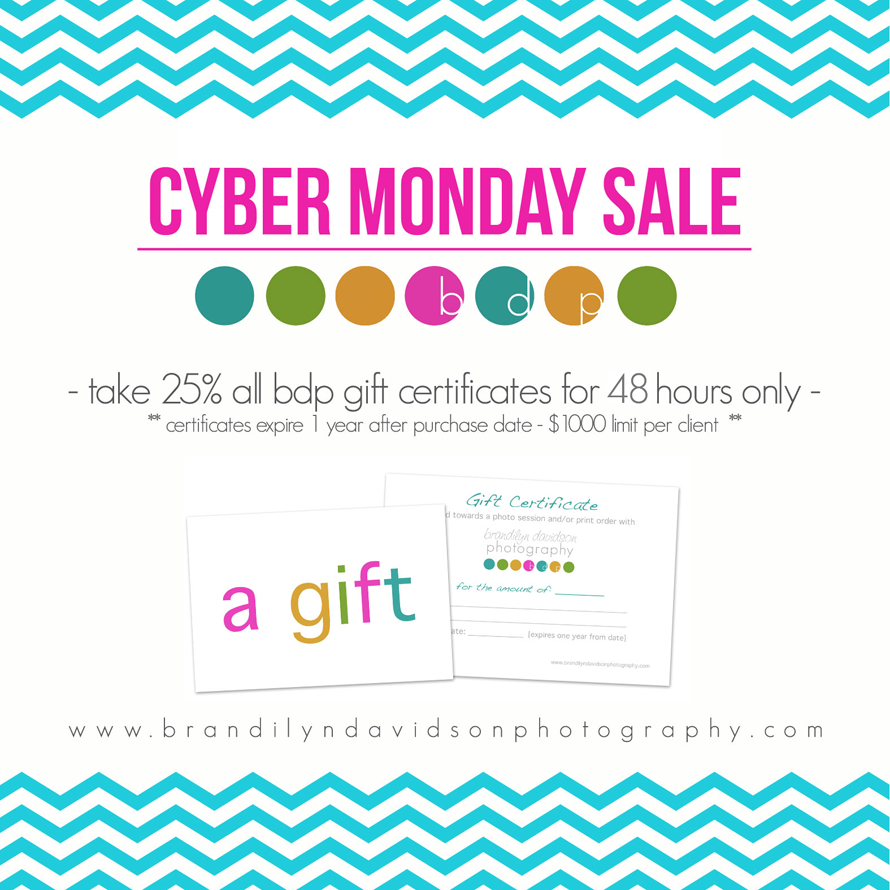 web-cyber-monday-sale-2014.png