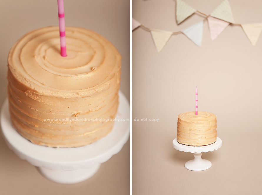 ari-cake-smash-cake-by-petite-sweets-in-johnson-city-tn-by-brandilyn-davidson-photography.jpg