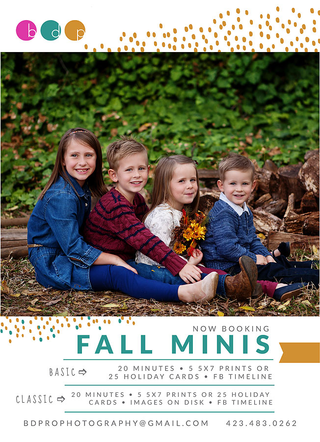 web-2017-Fall-Minis-Marketing.jpg