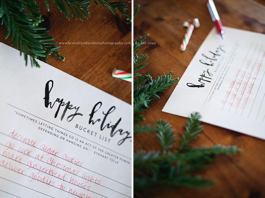 holiday-bucket-list-printable-from-roseville-ca-photographer-brandilyn-davidson-photography.jpg