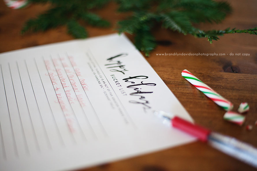 free-happy-holiday-bucket-list-printable-from-sacramento-family-photographer-brandilyn-davidson-photography.jpg