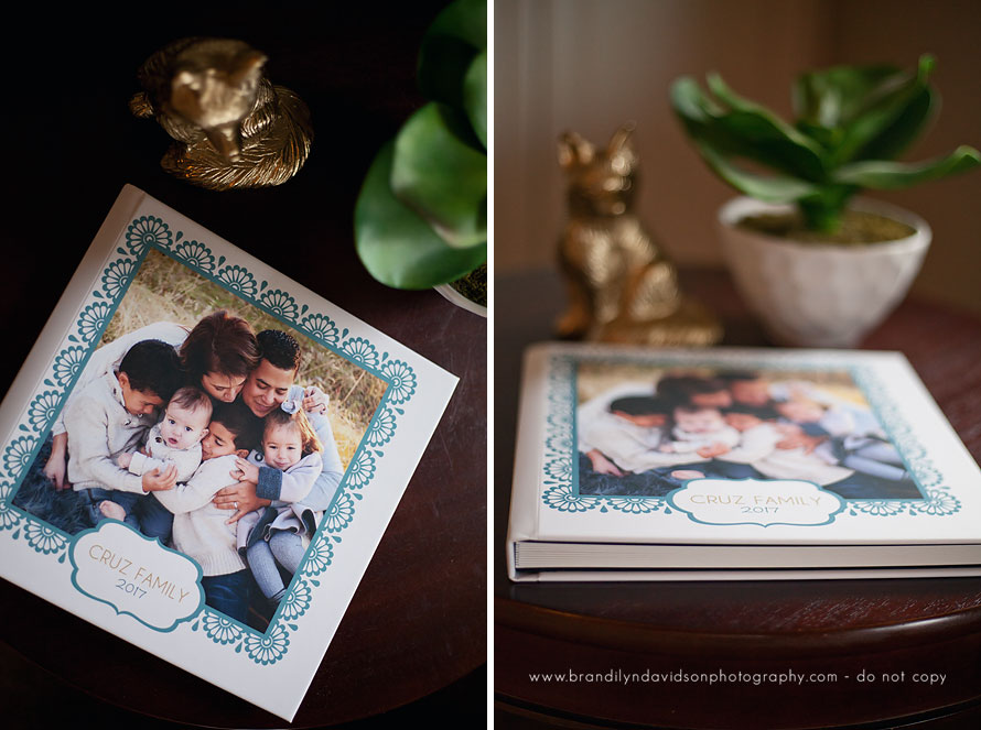 beautiful-custom-photo-album-book-by-northern-ca-family-photographer-brandilyn-davidson-photography.jpg