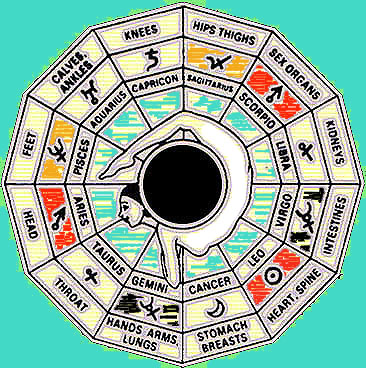 The Traditional Sign/Organ Pairings in Medical Astrology