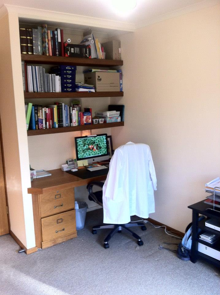 This client was very happy to have a study space for her use. The shelving was a little too cluttered for my satisfaction, but we were unable to cull the textbooks and paperwork any further at the time.