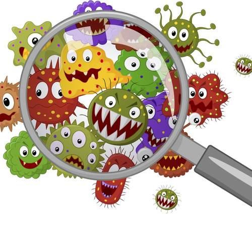 germsbacteria.jpg