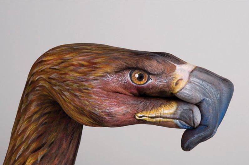 bird-hand.jpg