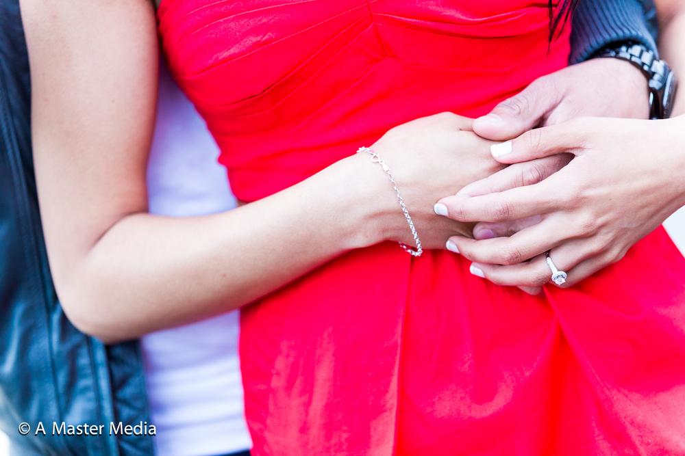 Neha Pre Wedding Web-0549.jpg