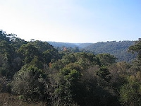 Hornsby Heights - view from Rofe Park